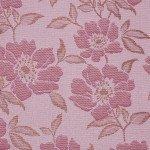 Камелия розовый