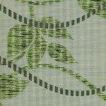 Лиана зеленый
